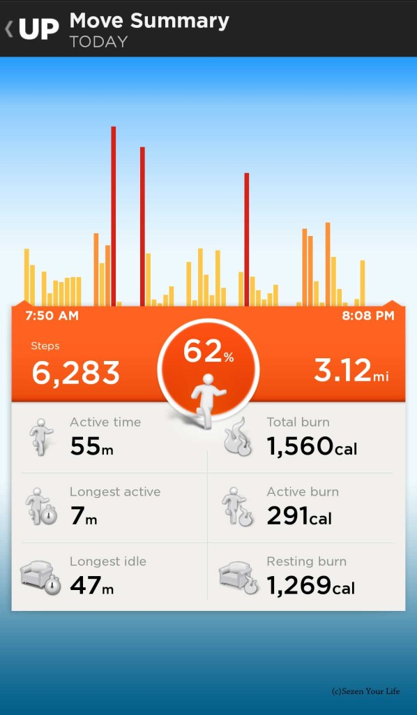 Jawbone UP Move Summary