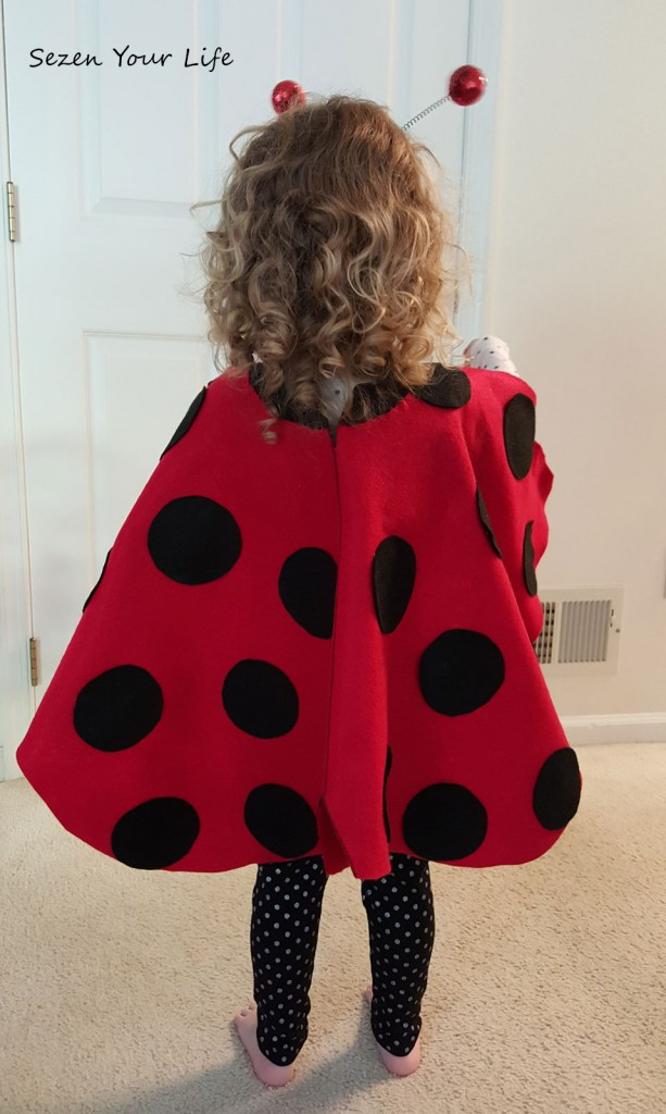 L-Ladybug